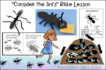 """Consider the Ants"" - ABC, I Believe Bible Study for Homeschool"