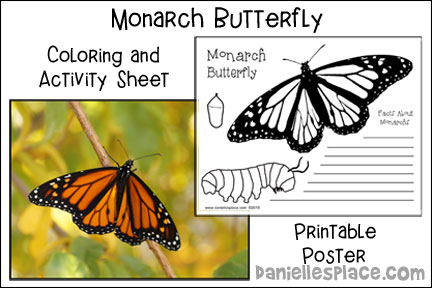 Monarch Butterfly Activity Sheet and Printable Poster