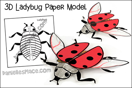 Ladybug 3D Model Craft Learning Activity